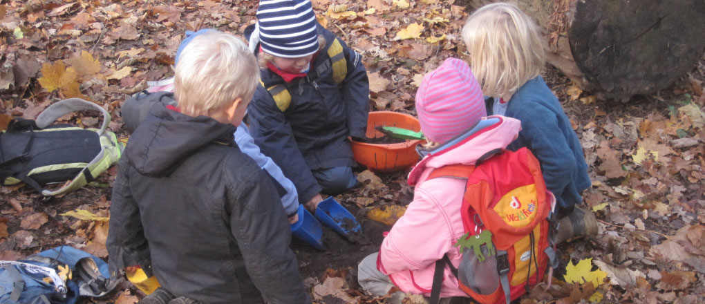 Waldkindergarten - Eidechse